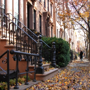 Brownstones in Brooklyn