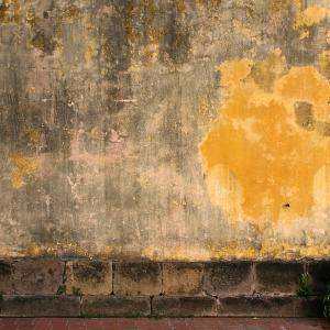 Wall Casko